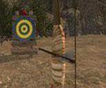 3D Robin Hood Oyunu