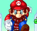 Mario Kış Dünyası Oyunu